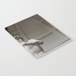 David Notebook