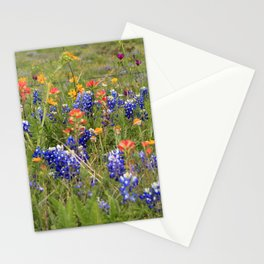 Bluebonnets, Indian Paintbrushes & Wildflowers Stationery Cards
