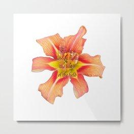 Lilies of the Field Metal Print