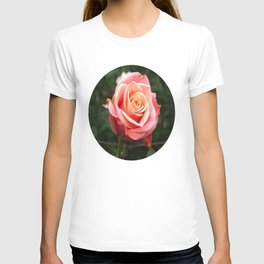 Ragged Rose T-shirt