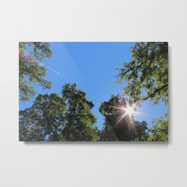 Sunburst Through Treetops Metal Print