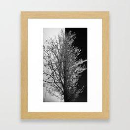 50/50 Framed Art Print