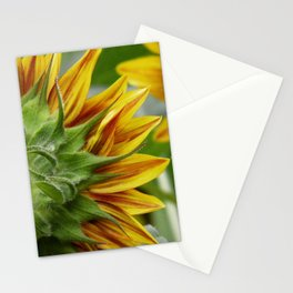 sunflower 01 - a unique perspective of this August beauty Stationery Cards