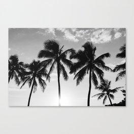 Hawaiian Palms II Canvas Print