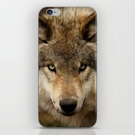 Undivided attention iPhone Skin