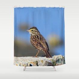 Male Savannah Sparrow Shower Curtain