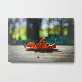 Hello Autumn Metal Print