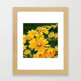 GOLDEN YELLOW  FLOWERS  GARDEN Framed Art Print