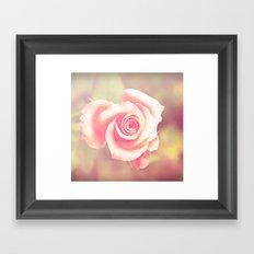 candy rose Framed Art Print