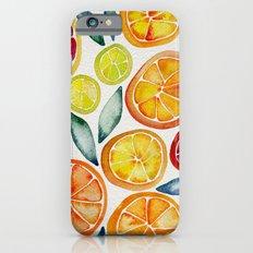 Sliced Citrus Watercolor iPhone 6 Slim Case