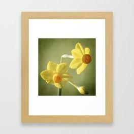 Heralding Spring Framed Art Print
