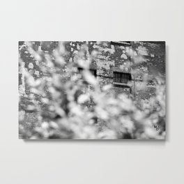 Solitary observation Metal Print