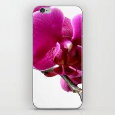 orchidea iPhone & iPod Skin