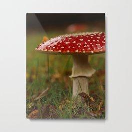 Amanita Mushroom Print... Metal Print