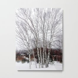 A Cloudy Winter Day Metal Print