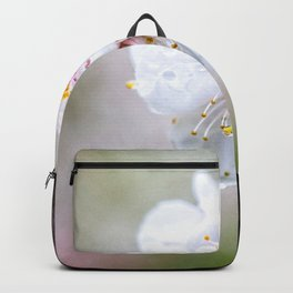 Wet Japanese Apricot Flowers On A Rainy Spring Day Backpack