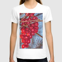 Grapes Schisandra autumn T-shirt