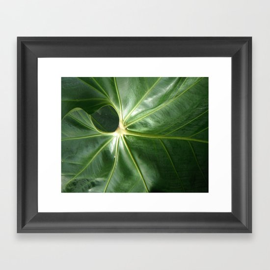 Nature's Circles Framed Art Print