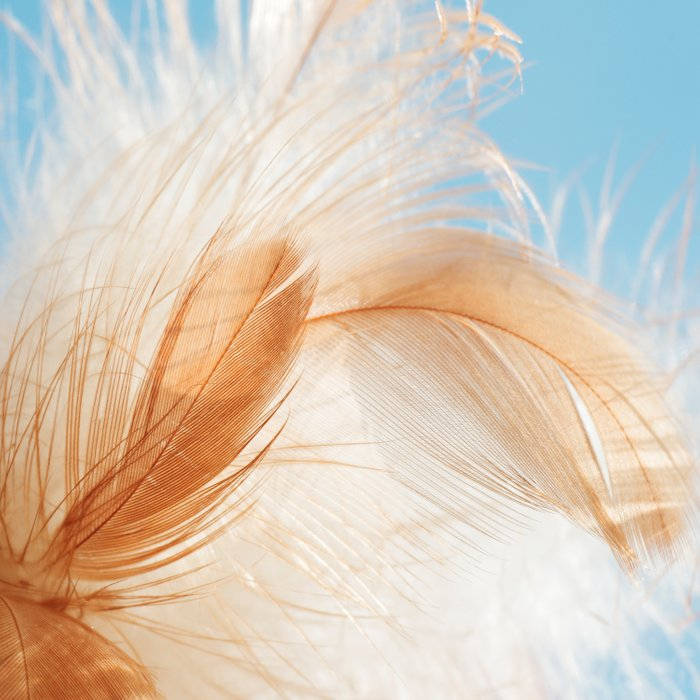 light as a feather Comforters