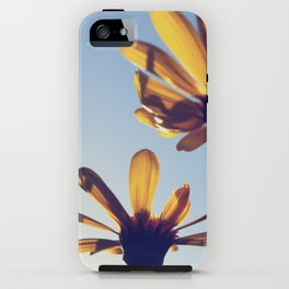 Spring Comes iPhone Case