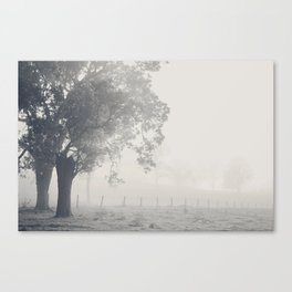 Faded... Canvas Print