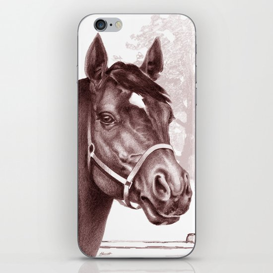 Stare of The Stallion iPhone & iPod Skin