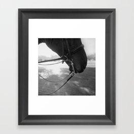 A beauty of equipment, worthy of our knights Framed Art Print