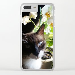 Black and White Snowshoe Cat With Moth Orchid Clear iPhone Case