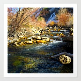 Mountain Run Art Print