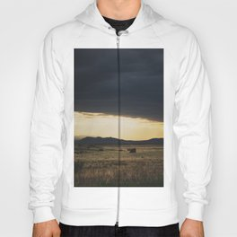 a new mexico storm ... Hoody