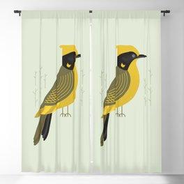 Helmeted Honeyeater, Bird of Australia Blackout Curtain