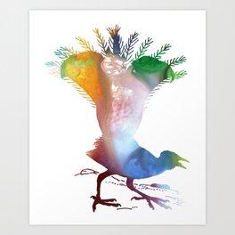 Lyrebird Art Print