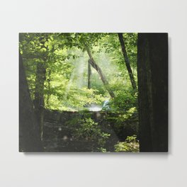 Late Summer Secrets Metal Print