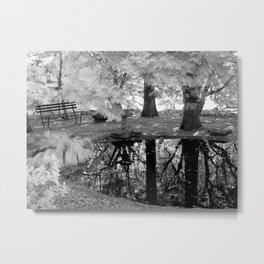 Serene Reflections Metal Print