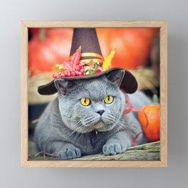 Halloween cat Framed Mini Art Print