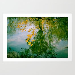 Nature Abstract in Autumn Art Print