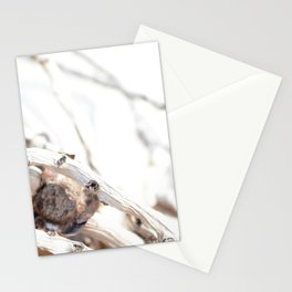 Drifted Palm Stationery Cards