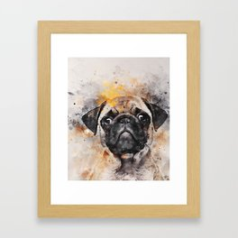 Pug Puppy Using Watercolor On Raw Canvas Framed Art Print