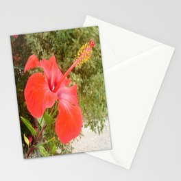 Beautiful Red Hibiscus Flower With Garden Background Stationery Cards