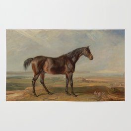 Dr. Syntax, a Bay Racehorse, Standing in a Coastal Landscape Rug