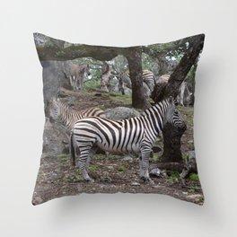 zeba nebas Throw Pillow
