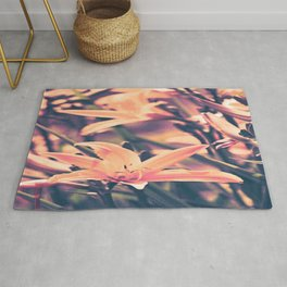 Daylilly Summer of  love Rug