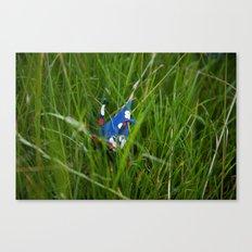 Crane 002 Canvas Print