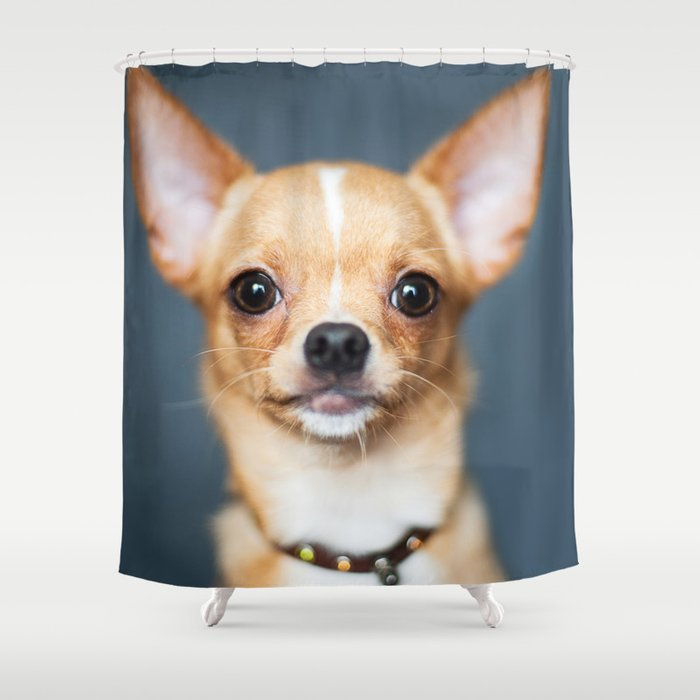 Chihuahua Shower Curtain By Pixydeco