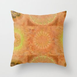 Lunular Balance Flowers  ID:16165-051446-23480 Throw Pillow