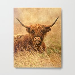 Happy Highlander Metal Print