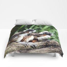Cotton-top Tamarin Comforters