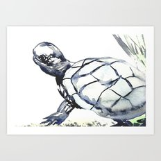 Slow and Steady Art Print