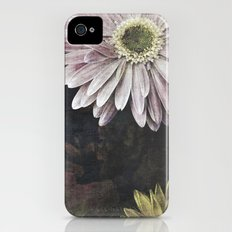 spring kiss iPhone (4, 4s) Slim Case
