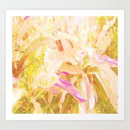 Tropical croton leaves 2/2 Art Print